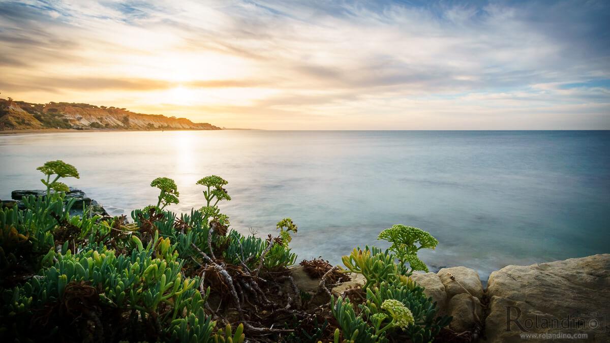 2016-10-08-abelharucas-beach-albufeira-rolandino-com-05197